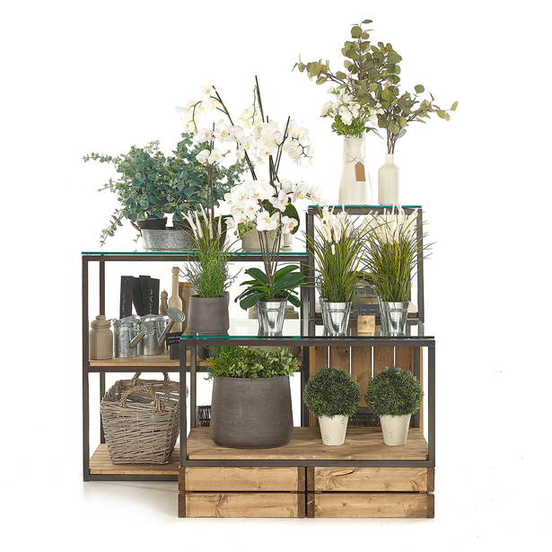 Warehouse-House-Plants-Cubes-and-Crates-1