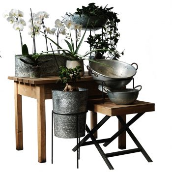 Gift-and-waiters-tables-with-Plants-and-Galvanised-900px