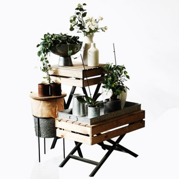 Waiters-Table-with-plants-and-galvanised-antiques-615px