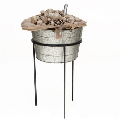 Mushrooms-in-bucket-stand