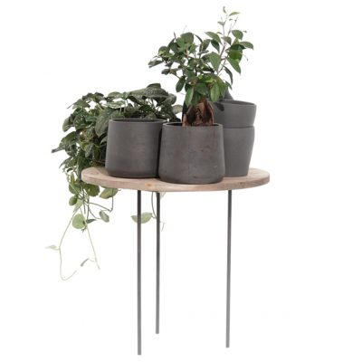 House-Plant-Merchandising-Risers-Tall-with-500m-Chunky-Top-615
