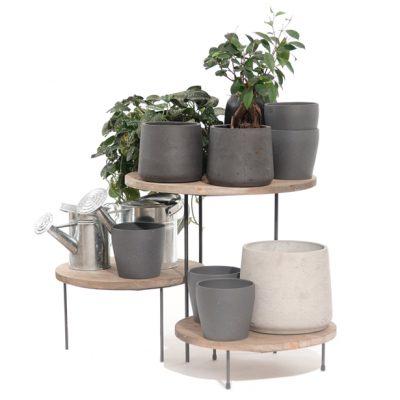 House-Plants-Merchandising-Risers-615