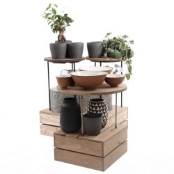 merchanising-risers-and-plinths-house-plants-1