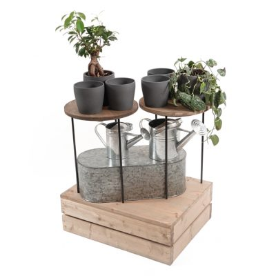 merchanising-risers-and-plinths-house-plants-2